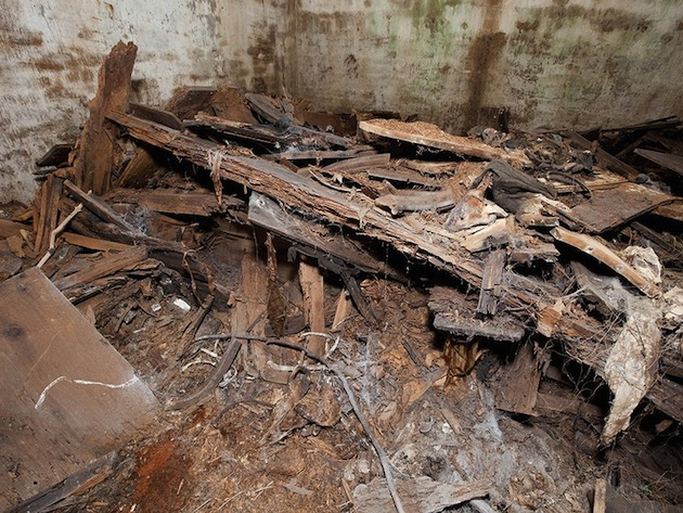Inside the semi-subterranean 19th-century burial vault, conditions had deteriorated. The wooden shelves that held the caskets of nearly two dozen individuals had disintegrated. Bones were exposed. (Chip Clark, National Museum of Natural History)