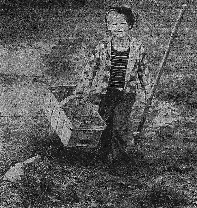 Howard Bruneau, 5, gardened with his father, Ray Bruneau, of 2057 37th Street. (Washington Post and Times Herald, May 14, 1956)
